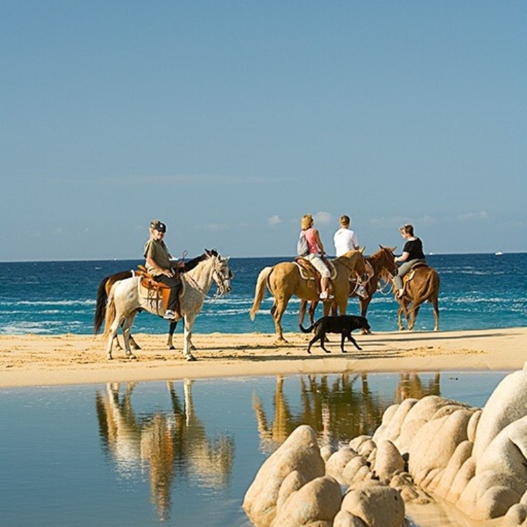 Horseback Riding in Los Cabos