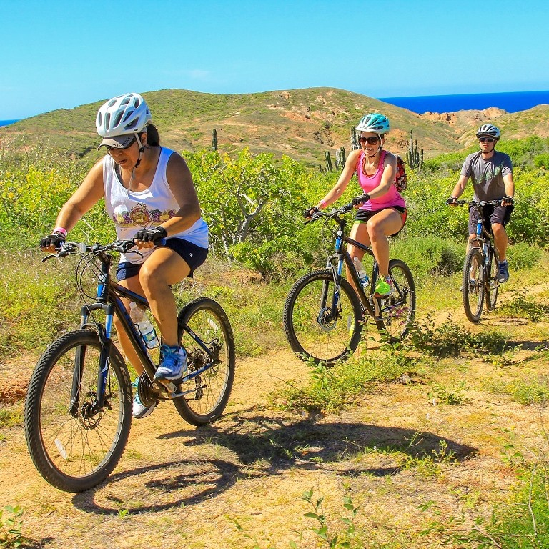 Mountain Bike Adventure in Los Cabos